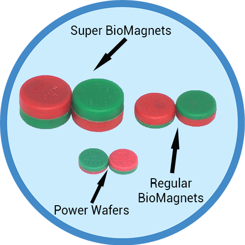 Different Mundimex therapy magnets: Super Biomagnets, Regular Biomags and Power Wafers
