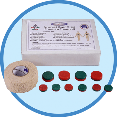 Biomagnetic Organ Therapy Kit