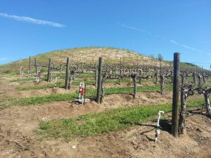 Magnetizer helping fight draught in California